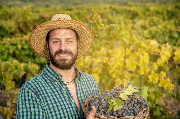 Bärtiger bauer im weinberg mit traubenwein