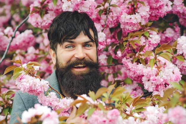 Bärtiger stilvoller mann. hübscher lächelnder bärtiger mann draußen. frühlingstag. frühlingsrosa sakura-blüte. herrenmode