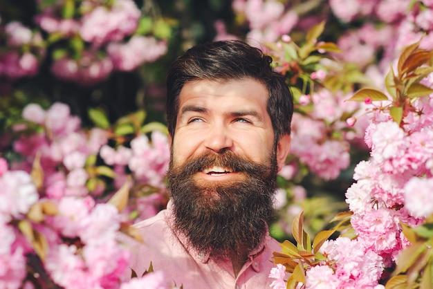 Bärtiger stilvoller mann in den rosa blumen. frühlingstag. frühlingsrosa sakura-blüte. hübscher lächelnder bärtiger mann draußen.