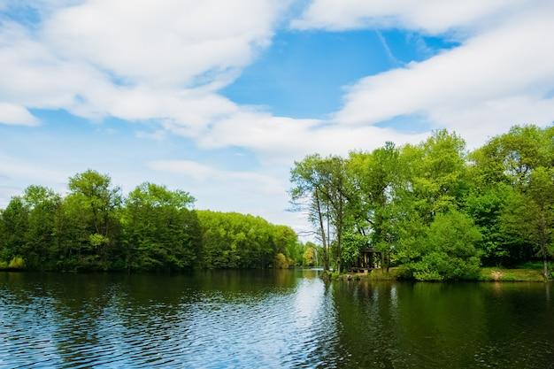 Bäume am ufer des sees im victory park minsk