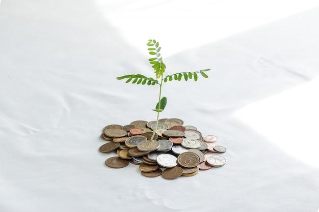 Bäume auf einen haufen geld pflanzen