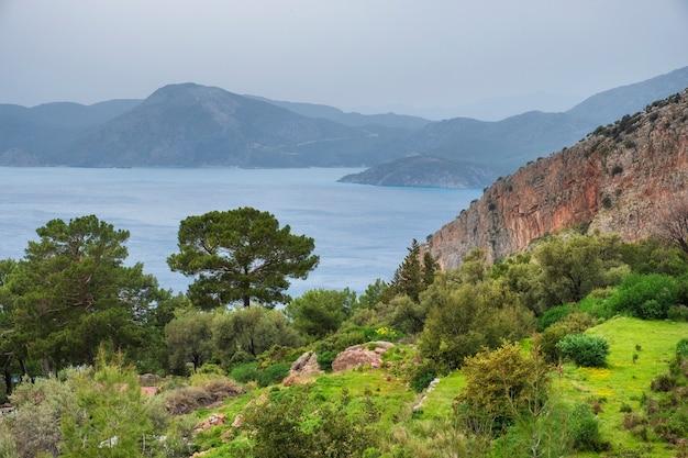 Bäume und gras mit blick auf das meer und die berge im hintergrund