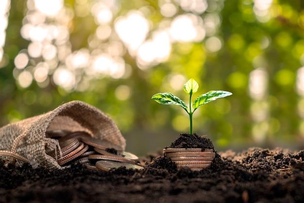 Bäume wachsen aus geldhaufen und geld, das aus den taschen fließt, um zu sparen.
