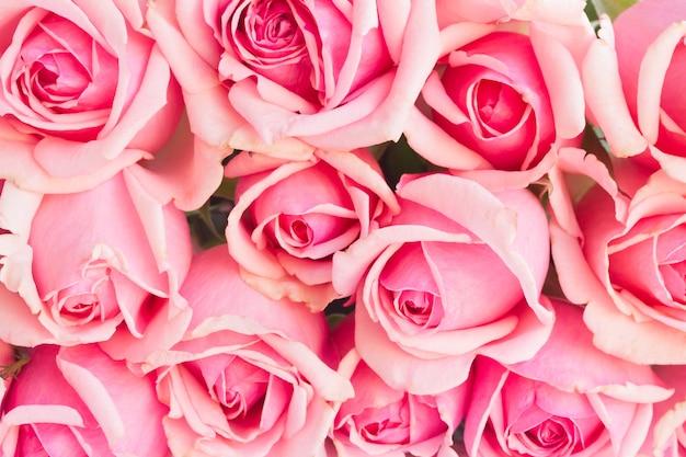 Bakcground des straußes der rosa blühenden rosen