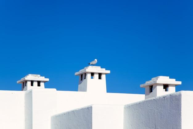 Balearische weiße mittelmeerhäuser mit seemöwe