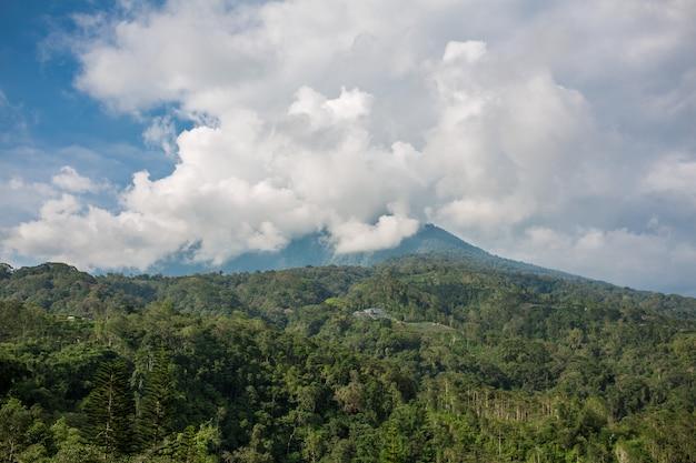Balinesse berglandschaft