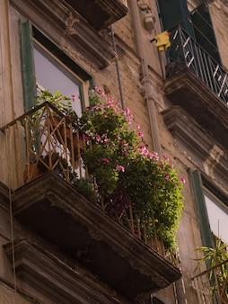 Balkon mit blumen in neapel
