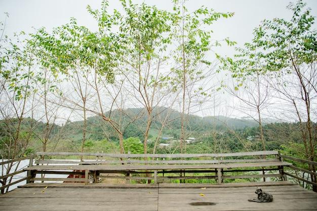 Balkon mit der natur