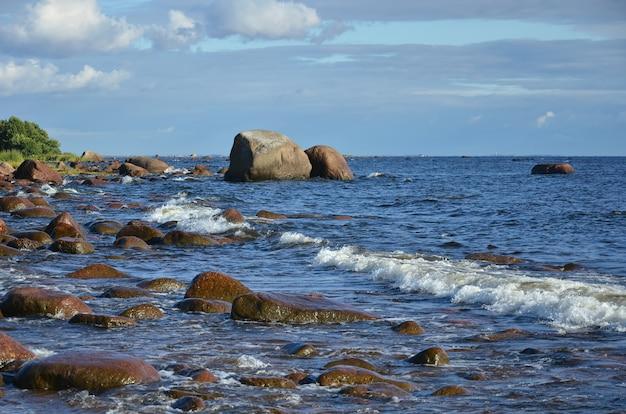 Baltisches meer: die meereswellen rollen auf steinen