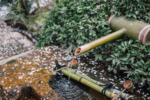 Bambus gießen wasser und sakura-blatt