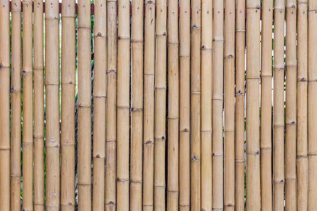 Bambus wand textur nahaufnahme