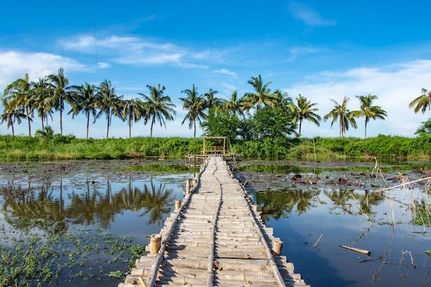 Bambusgehweg und bambusbude auf dem teich.