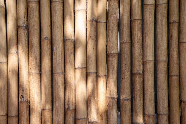 Bambushintergrund- und hintergrundlatten werden morgens mit sonnenlicht an der wandtrennwand und am zaun angeordnet.