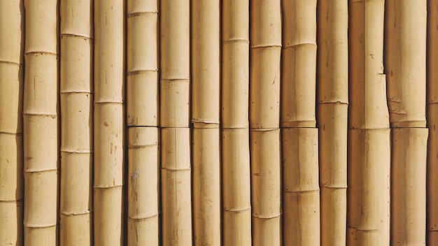 Bambushintergrundbeschaffenheit