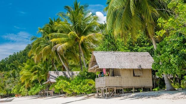 Bambushütte unter palmen einer gastfamilie auf gam island, west papuan, raja ampat, indonesien.