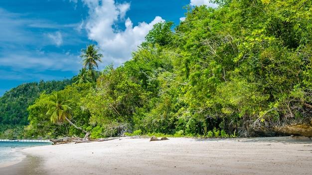 Bambushütten am strand, korallenriff einer gastfamilie gam island, west papuan, raja ampat, indonesien