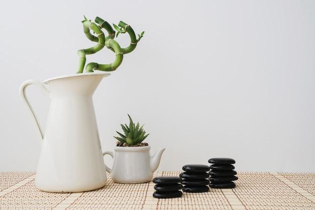 Bambuspflanzen und haufen vulkanischer steine
