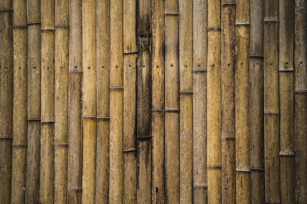 Bambusstockzaun-tapetenhintergrund