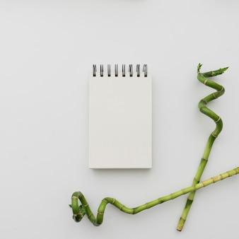 Bambusstöcke und notizblock