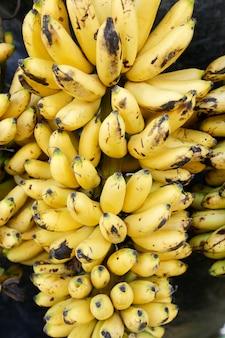 Bananen-sorte