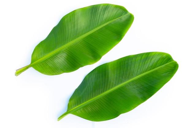 Bananenblätter auf weißer oberfläche