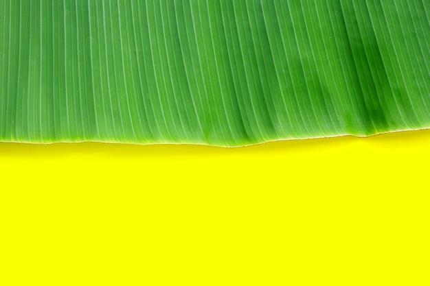 Bananenblatt auf gelbem hintergrund.