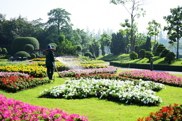 Bangkok thailand der schöne blumengarten in bangkoks großstadtpark