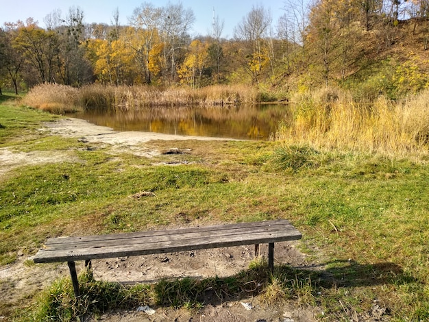 Bank am see im herbst