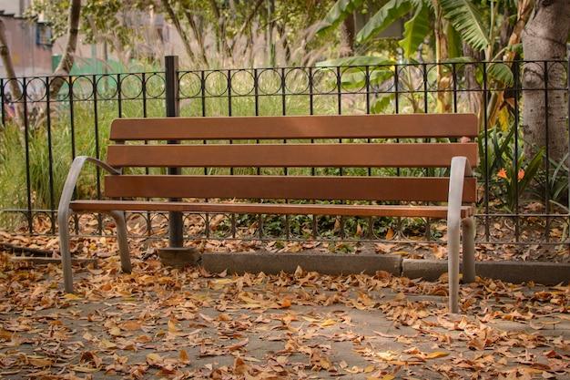 Bank im park mit trockenen blättern auf dem boden