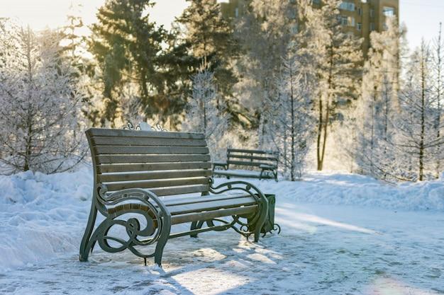 Bank und schneebedeckte bäume im stadtpark. schöne winterszene im park. sonnenlicht und kaltes wetter.