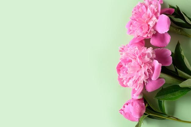Banner der rosa pfingstrose auf grünem hintergrund. blumenmuster.