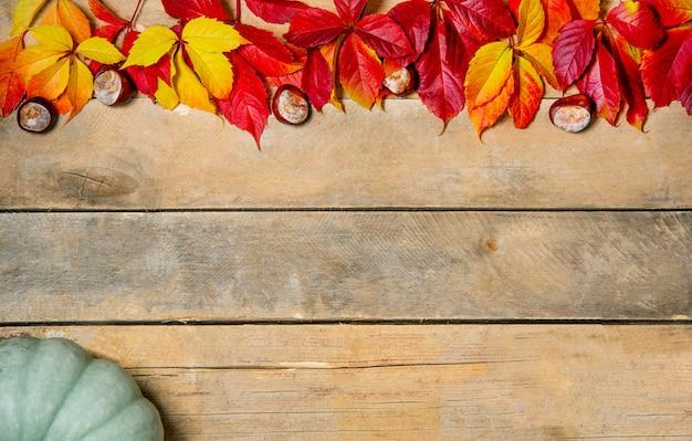 Banner. herbstholz mit gelb-roten und grünen blättern
