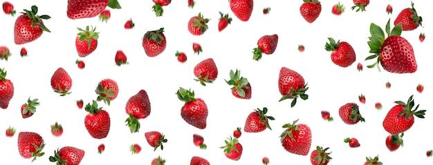 Banner mit vielen roten frischen ganzen erdbeeren, die über einem weißen hintergrund herunterfallen