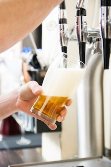 Barmixer, der das frische bier in der kneipe gießt