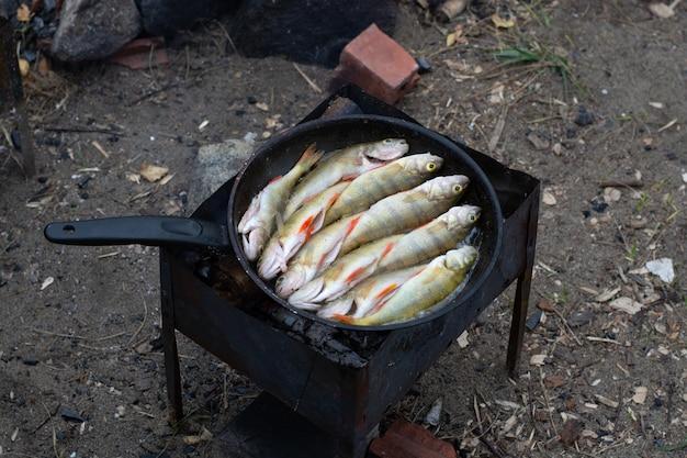 Barsch in einer bratpfanne.kochen in der natur