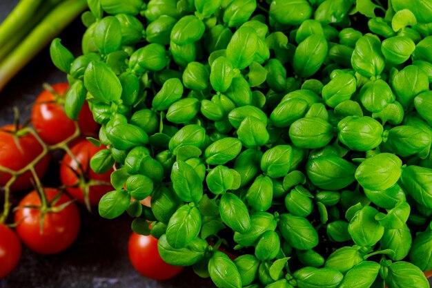 Basilikum mit tomaten auf dunkler oberfläche draufsicht, nahaufnahme.