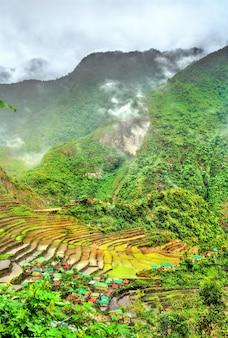 Batad reisterrassen, in ifugao, luzon island, philippinen