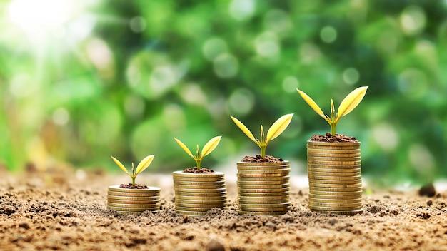 Bauen sie kleine pflanzen auf münzen an, die auf grünen unscharfen hintergründen und finanzideen gestapelt sind.