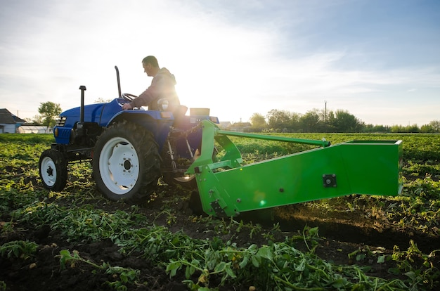 Bauer auf einem traktor gräbt kartoffeln aus und erntet im frühjahr die ersten kartoffeln, die ackerland bewirtschaften farming