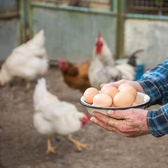 Bauer, der frische bio-eier hält. hühner im hintergrund