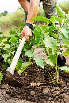 Bauer gräbt auf dem feld