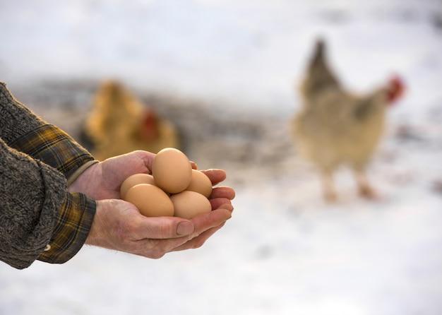 Bauer mit frischen bio-eiern
