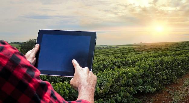 Bauer mit tablet-computer auf der kaffeeplantagen-feldlandschaft bei sonnenuntergang