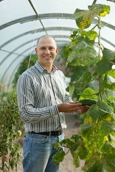 Bauer sieht gurken pflanze