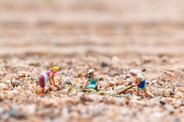 Bauerngrundstück in der wüste