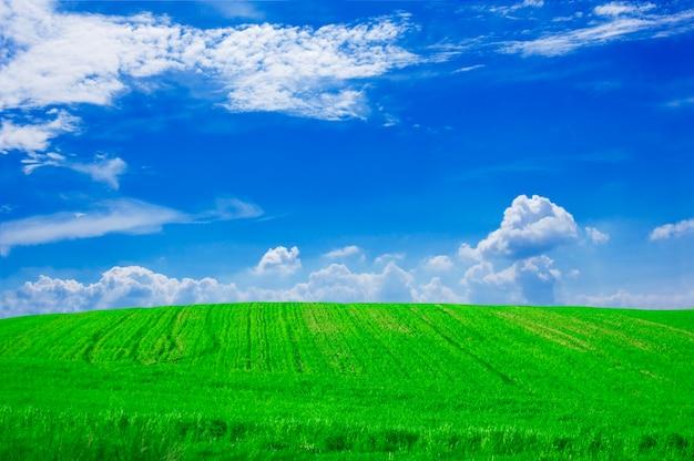 Bauernhof-feld mit wolken
