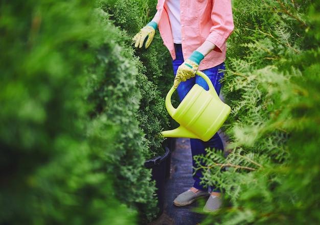 Bauernhof grün landwirtschaft mensch