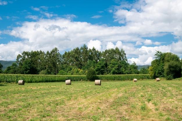 Bauernhoffeld mit blauem bewölktem himmel