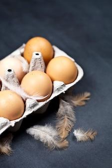 Bauernhofhühnereien im pappbehälter und in den federn.