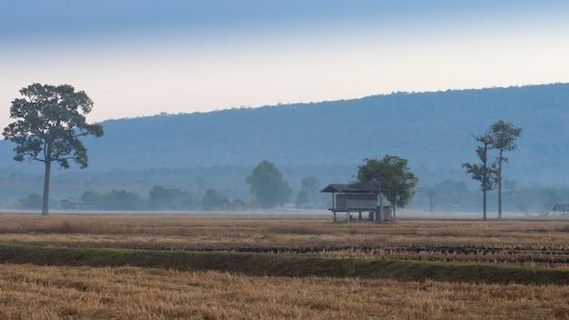Bauernhütte mit bergkulisse